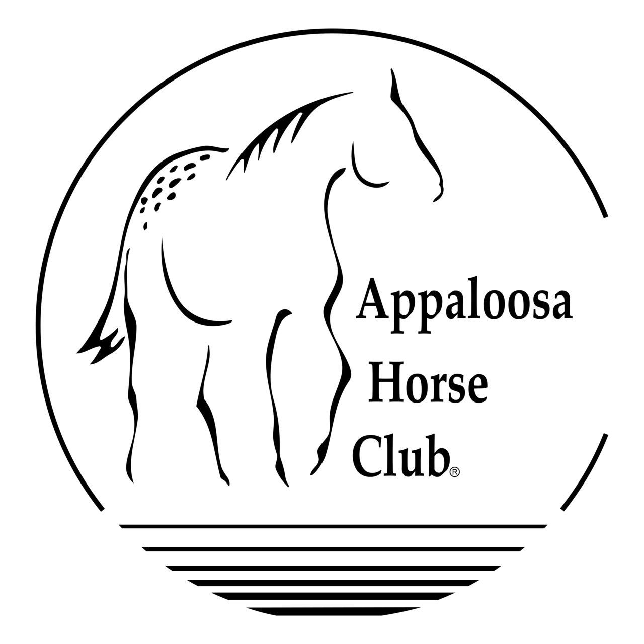 Appaloosa Horse Club Logo Png Transparent Brands Logos